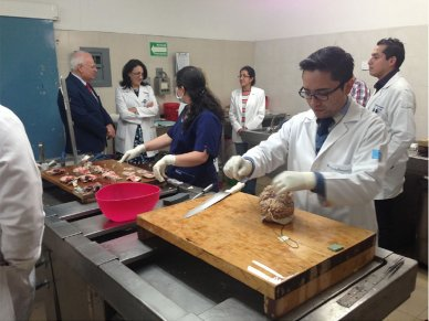 TrainingCentreMexicanAcademyofNeurology
